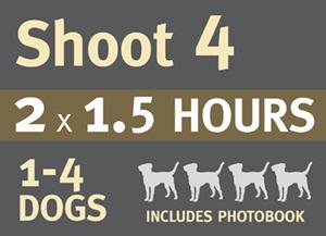 BDP PHOTO SHOOT-4