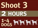 NEW PHOTO SHOOT ICONS3