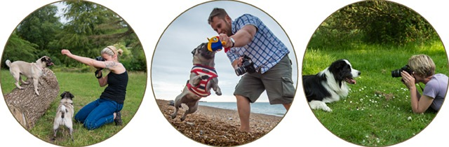 dog photography workshops