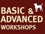 BASIC AND ADVANCED WORKSHOPS