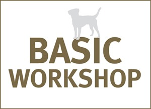 BASIC WORKSHOP