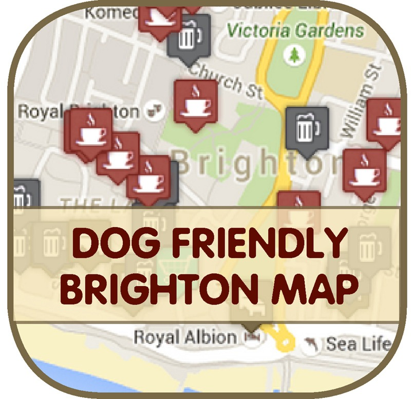 Dog Friendly Brighton