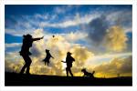 dog sunset poster, dog sunset print